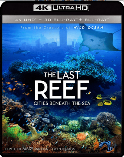 The Last Reef: Cities Beneath the Sea 4K 2012