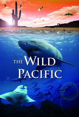 The Wild Pacific 4K 2016