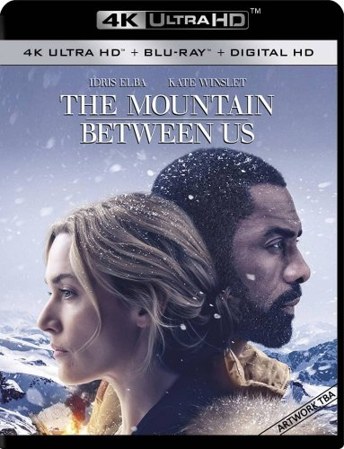The Mountain Between Us 4K 2017