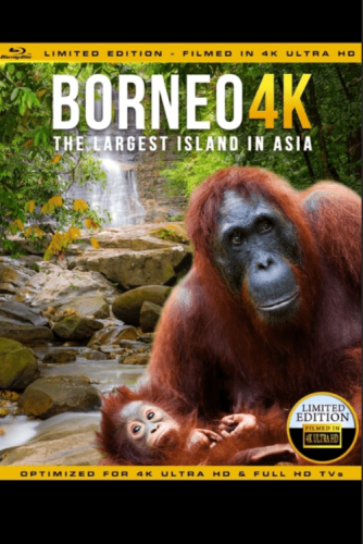 Borneo: The Fascination of Asia 4K 2017 DOCU